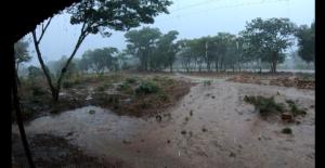 落雷を避けて…雨宿りさせてもらった日。