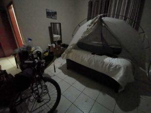 ………ゴキブリの巣で寝る。旅女子は見ちゃダメ。